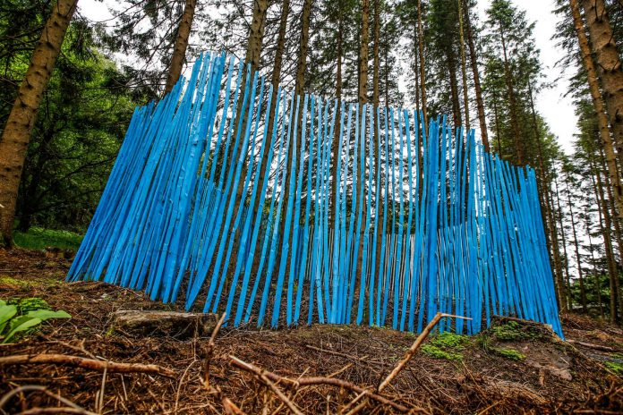 Fiona Curran's 'the grass seemed darker than ever', a new addition to the Kielder Water and Forest Park art and architecture programme