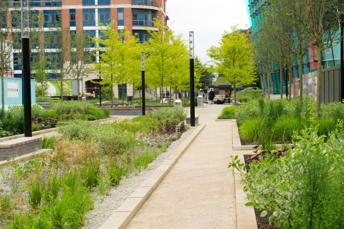 The new Sovereign Square, Leeds. A rain garden manages surface-water run off. All photos: Simon Vine