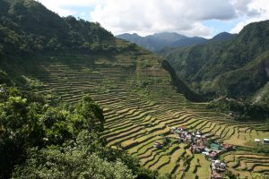 The amphitheatre of terraces at Batad, Philippines. © Charles Lamb