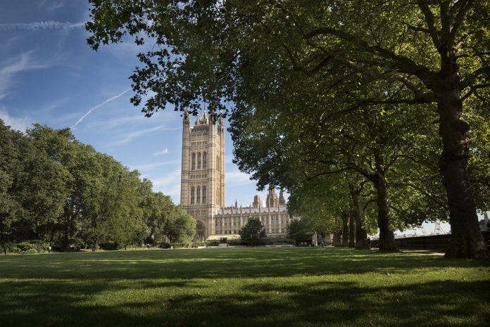 Victoria Tower Gardens, the proposed site for the new Holocaust memorial. Photo © Malcolm Reading Consultants/Emily Whitfield-Wicks
