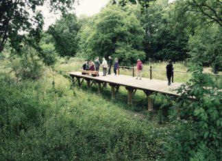 Attenuation basin boardwalk Crawter's
