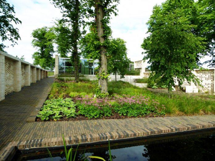 woodland garden Maggie's Lanarkshire