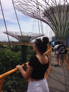 Visiting Gardens by the Bay in Singapore, designed by Grant Associates