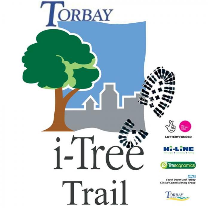 Torbay tree trail