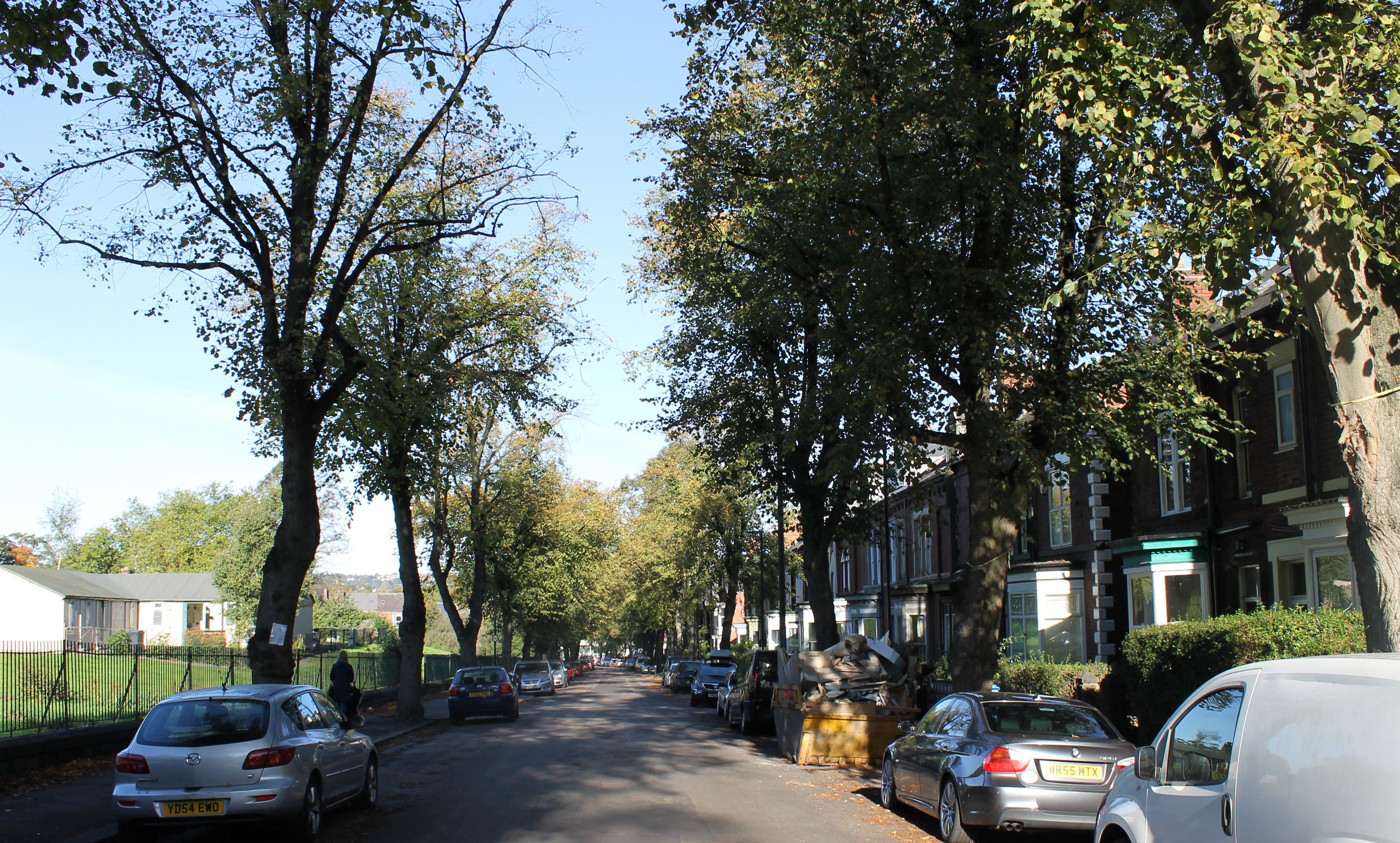 faaf7213a5 Streets ahead? Tree felling in Sheffield – a landscape perspective ...
