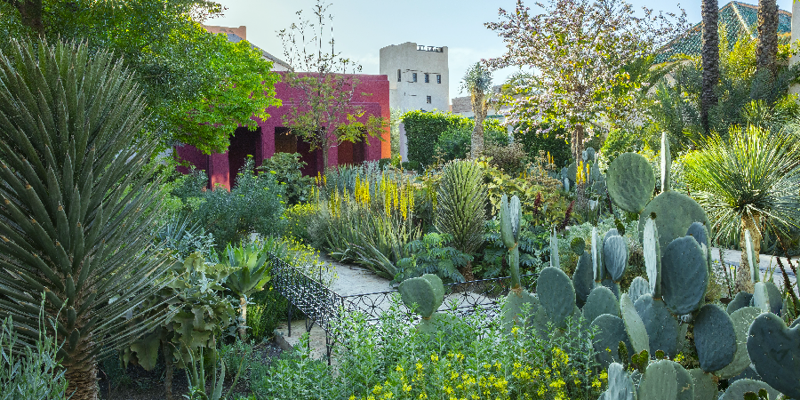 Le Jardin Secret, Marrakech - Tom Stuart-Smith Ltd