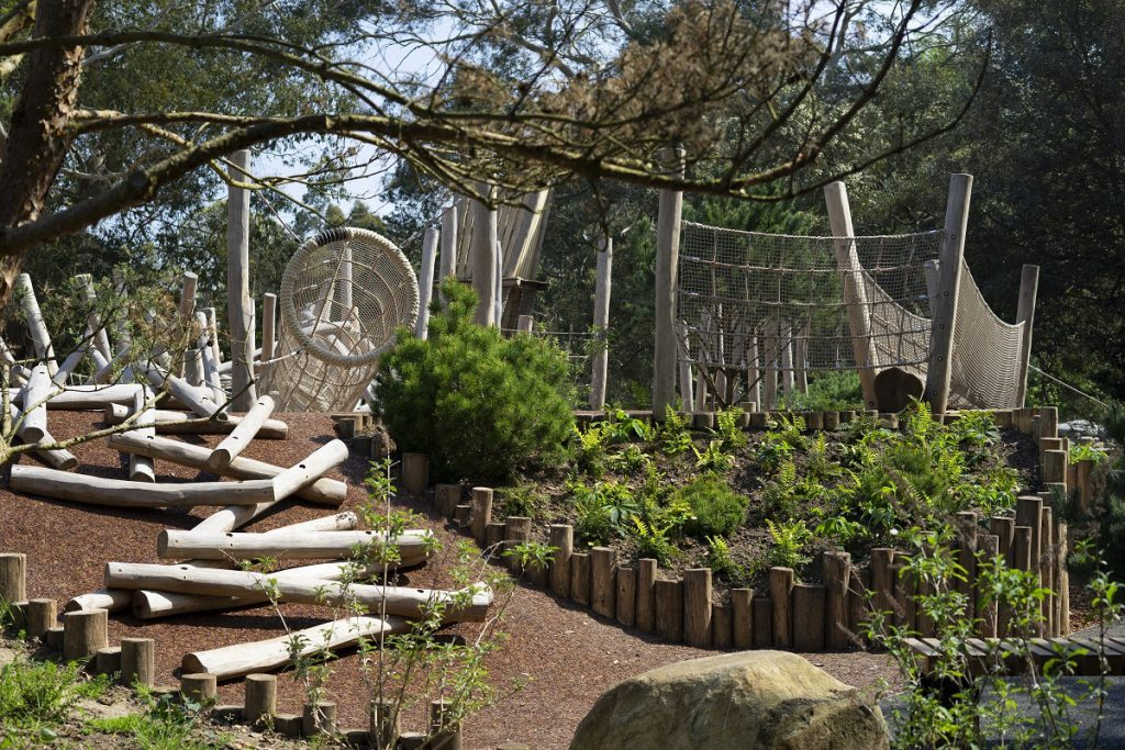 liawards2020-winner03-childrens-garden-royal-botanic-gardens-kew-ground-control-ltd