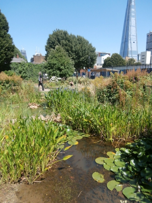 Photograph: Bankside Open Spaces Trust