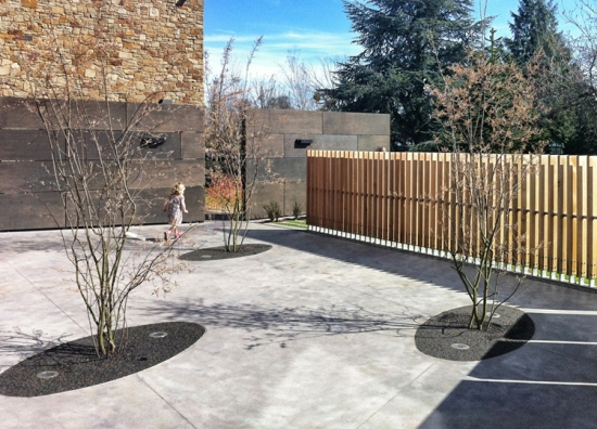 The Hub's open spaces designed by b:d landscape architects