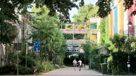 Freiburg by Malcolm Dodds
