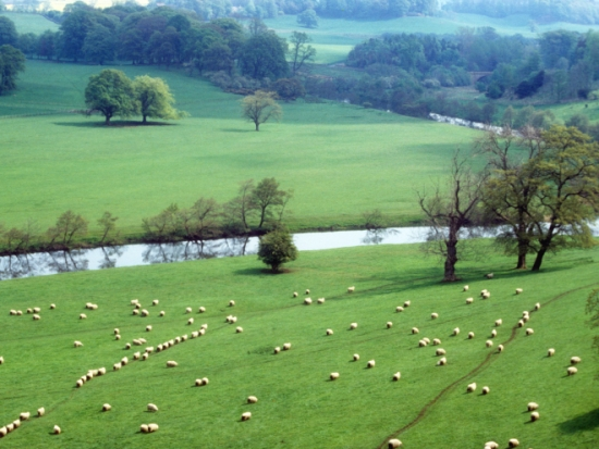 A Capability Brown landscape