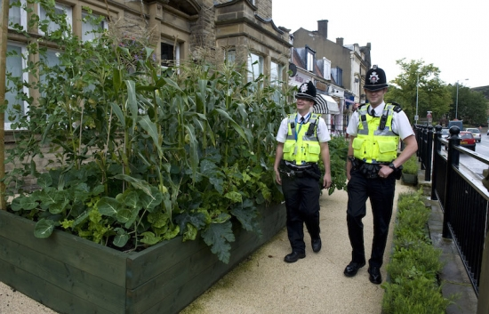 Incredible Edible Todmorden shares its knowledge