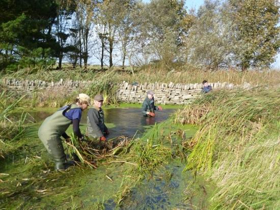 Wild Purbeck Nature Improvement Area. Photo: Natural England