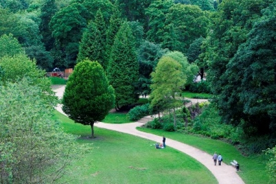 Open spaces such as Ouseburn Parks, Newcastle-upon-Tyne, recently restored by Southern Green, promote healthy brain activity.