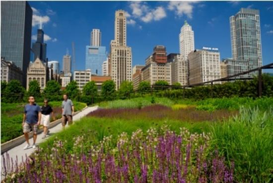 Millennium Park in Chicago is the US's largest new park. Photo: Patrick Pyszka