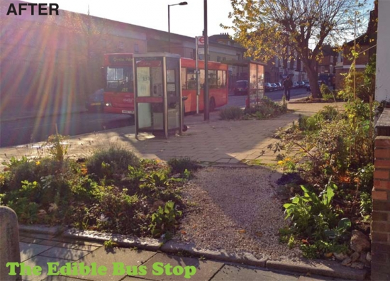 A bust stop after a makeover from the Edible Bus Stop group