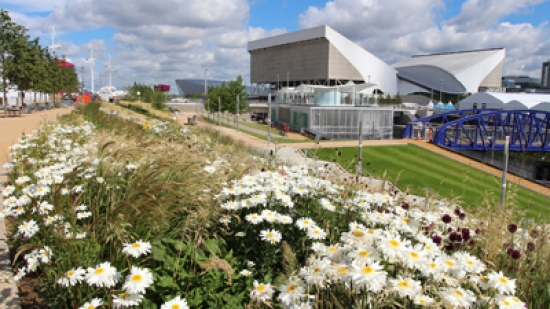 The Olympic Park at Stratford – all photographs credited to Peter Neal